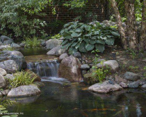 Daper Enterprises Koi Pond Steinbach