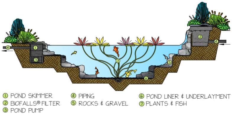 pond-how-it-works